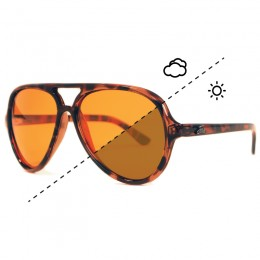 Aviator Switch Polarised Sunglasses