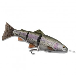 4D Line Thru Trout 25cm Moderate Sink