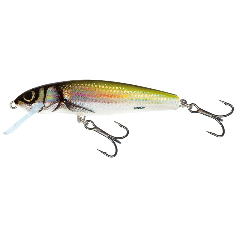 Minnow Floating 7cm image 2