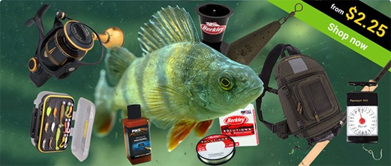 Predator fishing gear