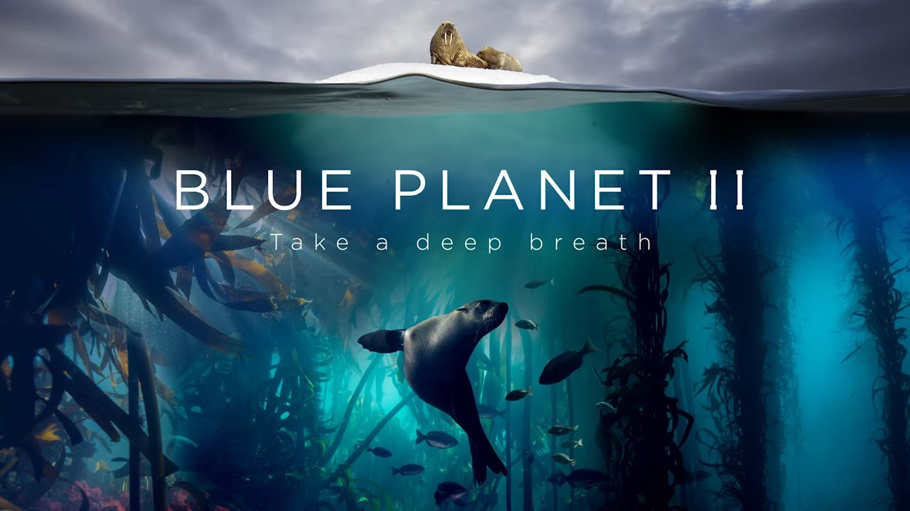 3 Spectacular Moments from Blue Planet II