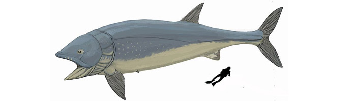 Leedsichthys reconstruction